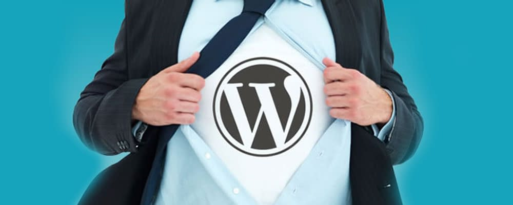 Top-10-Powerful-Reasons-for-Using-WordPress-Website-for-Your-Business